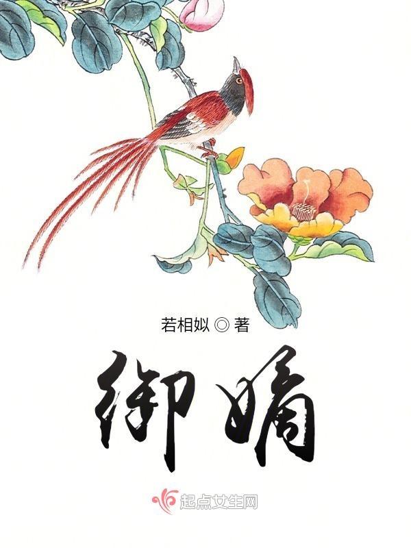金夫银妇小说