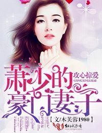萧少的豪门妻子(木芙蓉1980)